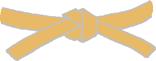 pas-pomaranczowy